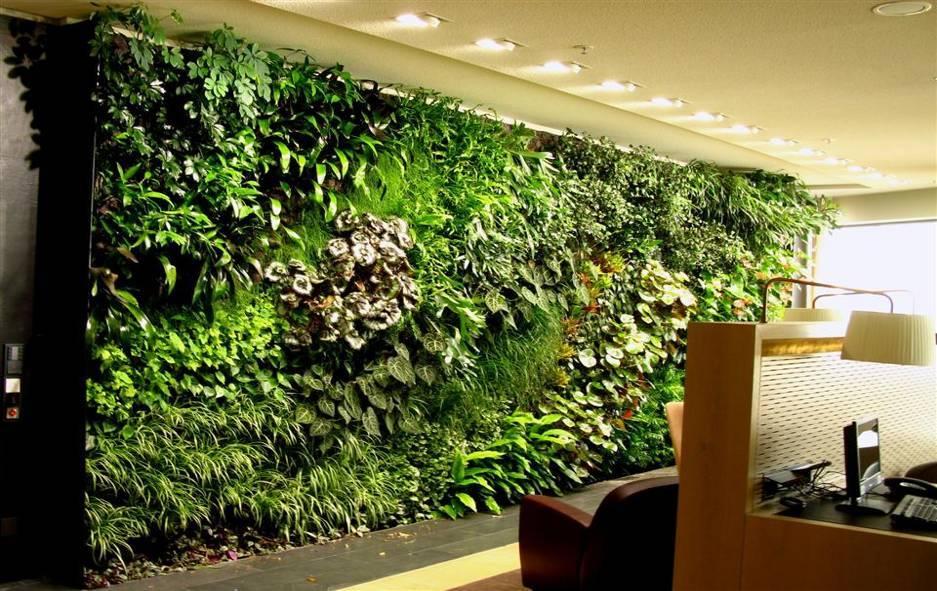 办公室绿植墙