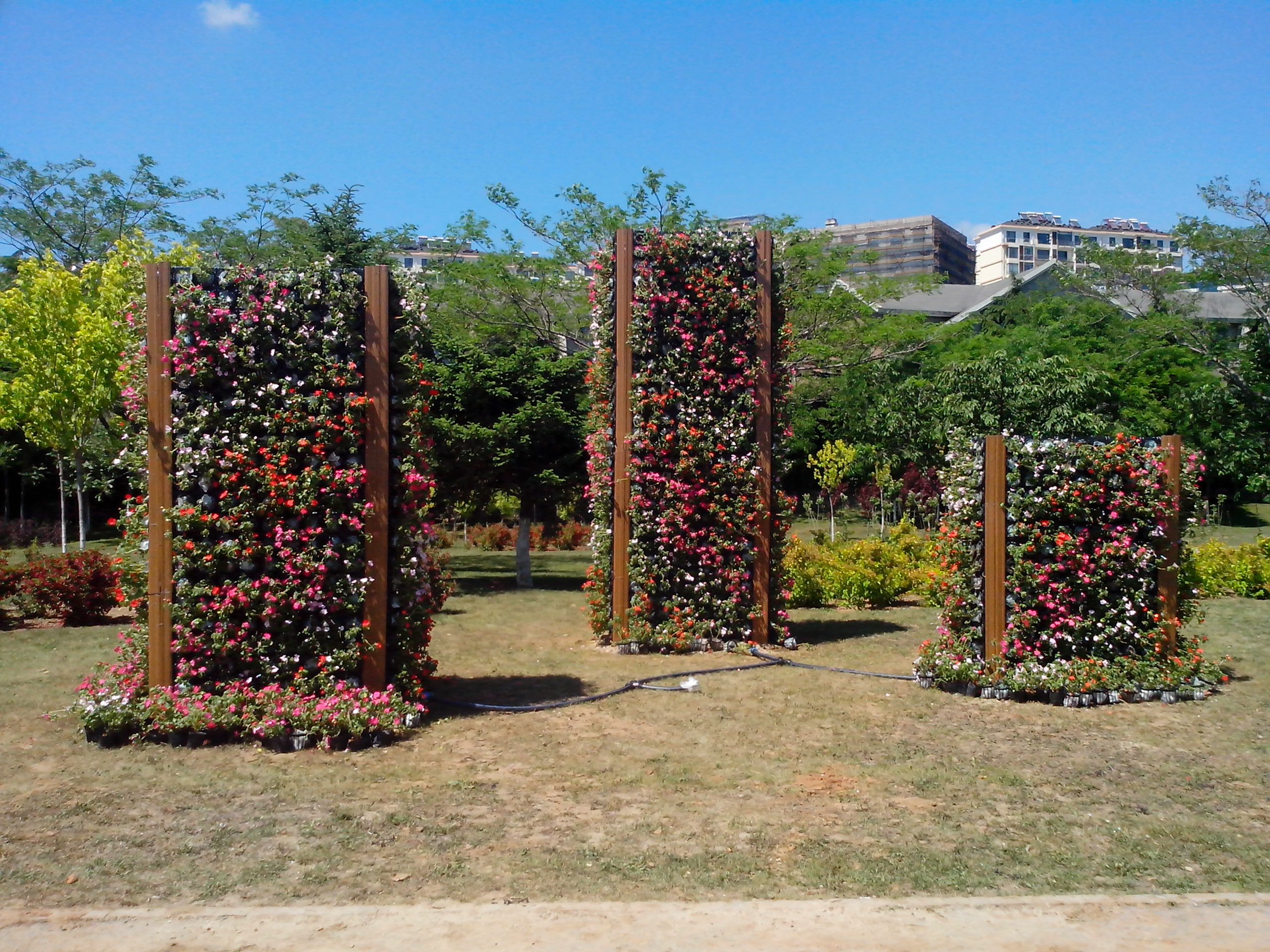 主页 供应信息 立体绿化工程 广场公园绿化系列  沈阳卓尔园艺工程